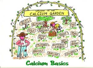 calcium3