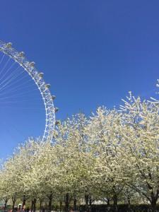 Spring day near the London Eye